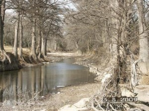 Driftwood creek