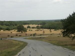 La Ventana subdivision in Driftwood